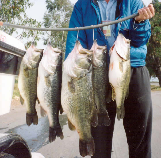Photo slideshow of the pioneer trading post an for Bass fishing lakes near me