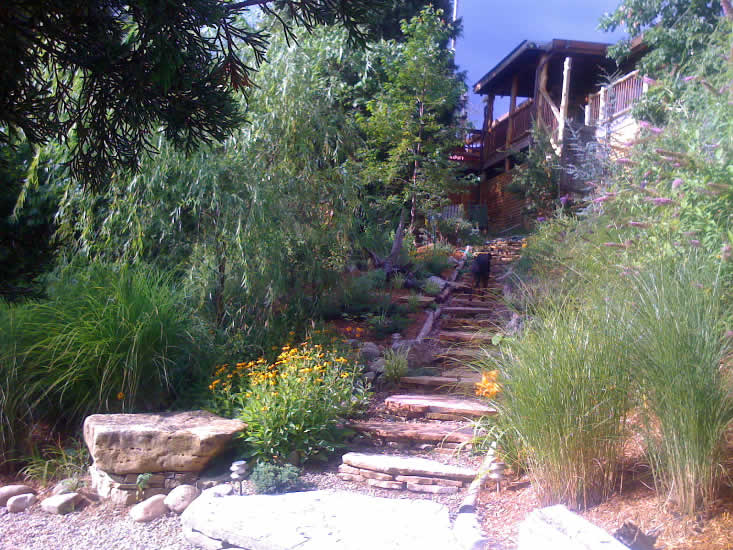 Steps leading from Cabin on Douglas Lake